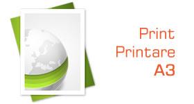 print printare a3